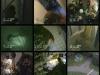 videosurveillance-1