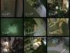 videosurveillance-2