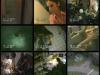 videosurveillance-3