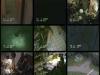 videosurveillance-4